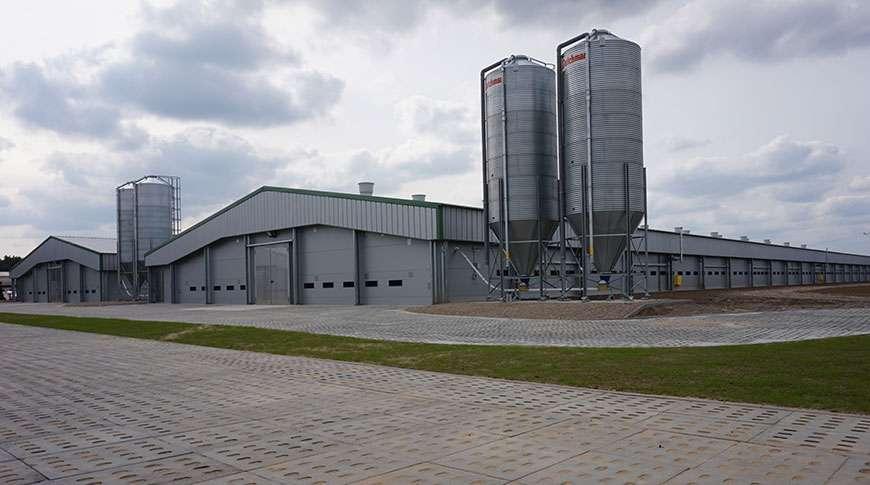 livestock farms breeding farming steel PEB